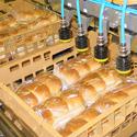 Compact Systeem Kratbelading Kleinbrood